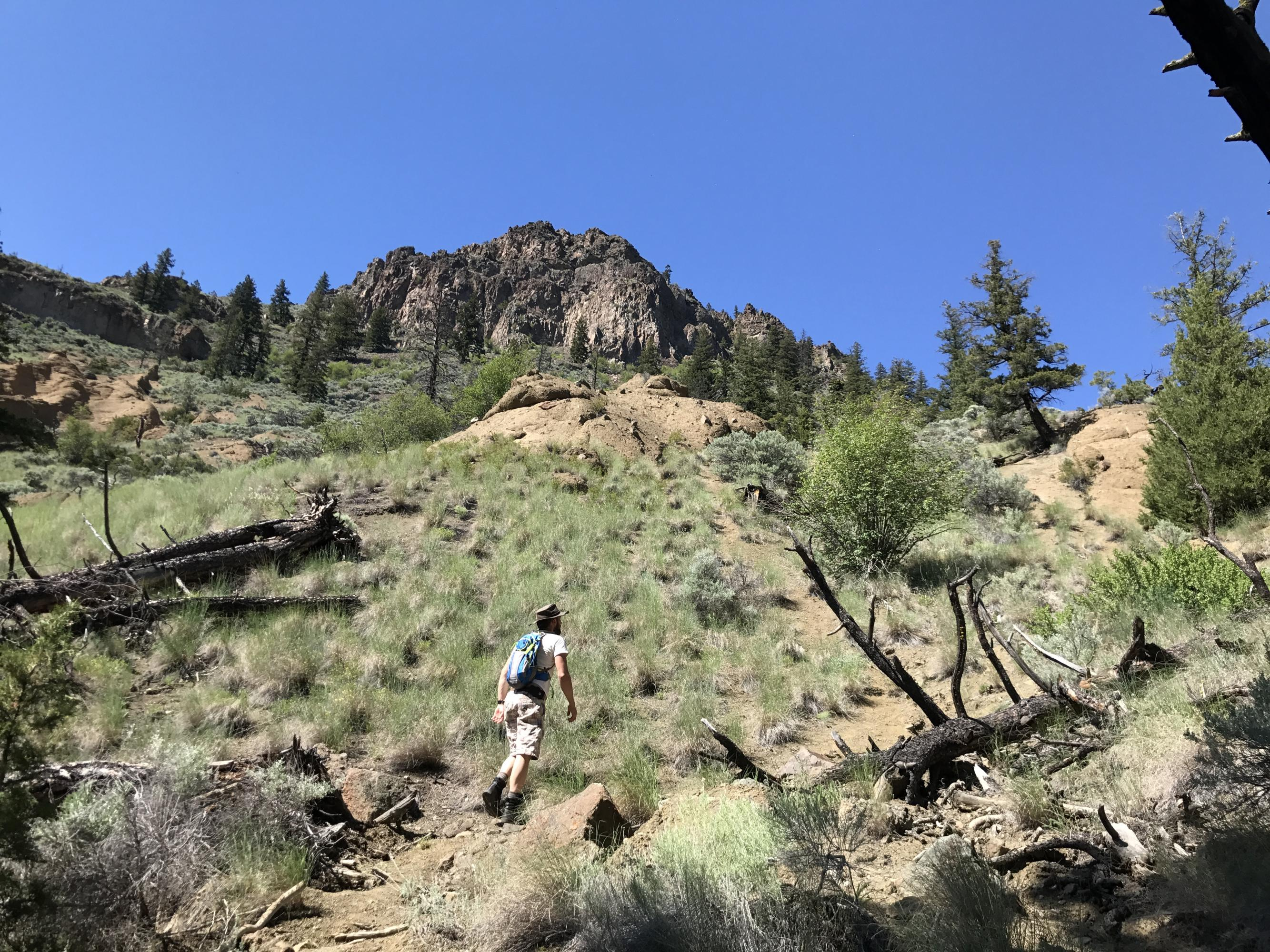 HikingAddiction ca - Trails: Cinnamon Ridge/Hoodoos Ridge Ascent