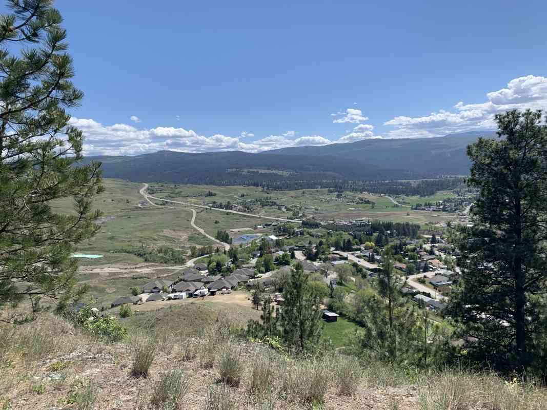 Black Mountain Suburbs Viewpoint